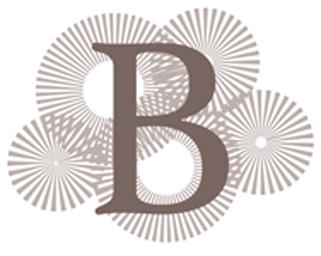 Berner Travel Logo